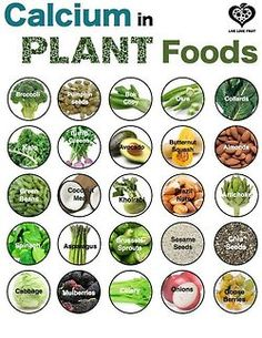 Plant foods contain a lot more Ca per 100 grams than FORTIFIED cow's milk: Stinging Nettles (481mg); cumin seeds (931mg); chia seeds, dried (631mg); flax seeds (255mg); figs, dried (162mg); turnip greens (190mg); kale (135mg); hazelnuts (114mg); garlic (181mg); dried savory (2,132mg), almonds (264mg); collard greens (203mg); parsley (138mg); sesame seeds (1,160mg); Hijiki sea vegetables (1,400), etc.Truth is, 100 grams of fortified cow's milk contain only about 113mg Ca… And it...