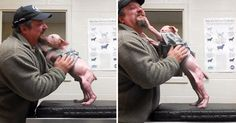 Pit Bull Puppy Is Super Excited To Be Reunited With The Man That Rescued Him From Certain Death.
