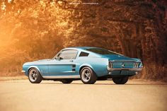 """""""utwo: """" 1967 Ford Mustang Fastback © gerling racing """" NOT a Shelby BTW, but a great looking car! Ford Mustang 1964, Ford Mustang Fastback, Mustang Cars, Classic Mustang, Ford Classic Cars, Design Retro, Pontiac Lemans, Best Muscle Cars, Pony Car"""