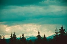 Landscape - null