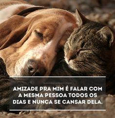 Tipos de amigos. Leia a mensagem Tipos de amigos no Mensagens & Amizade. O primeiro site de mensagens de amizade do Brasil.