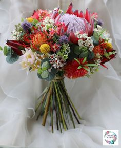 Rustic bouquet. Bride, bridesmaid bouquet of rustic, native flowers. Protea, banksia, wattle, gumnuts. Australian wedding flowers.