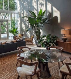 Table Tropical Plants, Light Shades, Minimalism, Classy, Warm, Dining, Architecture, Lenny Kravitz, Green