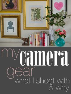 My Camera Gear: What I Shoot With and Why // By Ashley Urke--decor blogger of Domestic Fashionista and professional photographer.
