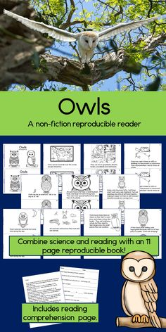 Combine science and literacy with Owls, a non-fiction reader. It comes as both a reproducible booklet, and as a one page text with a reading comprehension worksheet. Your students will be fascinated to learn all about these amazing creatures! TpT $