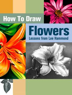 Claim your FREE Digital Download on How to Draw a Rose, a Lily and more!