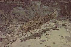 """""""Brown Trout,"""" Neil Welliver, 1974, oil on canvas, 13 x 18 1/2"""", Weatherspoon Art Museum."""