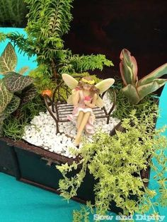 Fairy Garden in a wooden jewelry box