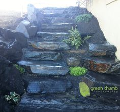 Boulder stairs speak for themselves. They are unique and beautiful and can be incorporated in just about any design. Adding small plant material helps to give colour contrast to the finished product.