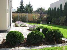 projektowanie zieleni Garden Modern, Garden Ideas, Gardening, Plants, Beautiful Gardens, Modern Gardens, Lawn And Garden, Landscaping Ideas, Plant