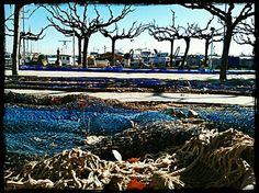 El Port de Cambrils. Tarragona.