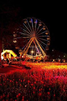 Floriade Nightfest 2010 - Canberra - Australia by D-eye, via Flickr