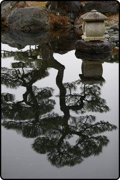 mistymorrning:  Japanese garden…