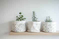 New Products for July + a Free Gift for You – Mono Online Shop #weylandts #entertaining