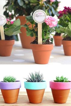 Our mini terracotta flower pots aren't just for plants! Take a look at our range of mini clay flower pots that are perfect for decorating to use as wedding favours, in floristy and as the base of many crafts. Clay Flower Pots, Terracotta Flower Pots, Clay Pots, Projects For Kids, Diy For Kids, Project Ideas, Craft Ideas, Adult Crafts, Fun Crafts