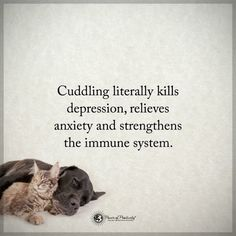 Little spoon or big spoon sometimes to hold is as good as to be held Happy Thoughts, Positive Thoughts, Positive Quotes, Dog Separation Anxiety, Dog Anxiety, Cuddle Quotes, Hopeless Love, Power Of Positivity, Immune System