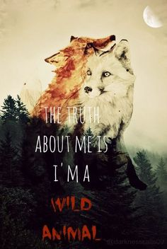The truth about me is I'm a wild animal.
