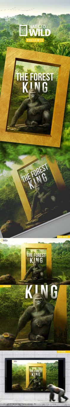 Forest King on Behance