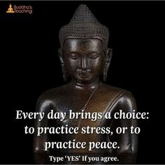"""Buddha Buddhism Quotes on Instagram: """"👇🏾 . What are your opinions about the quote? 💚 . ➖➖➖➖➖➖➖➖➖➖➖➖ 💭 Tag someone below who would love this post 👍 Follow us @buddhaquotes_…"""""""