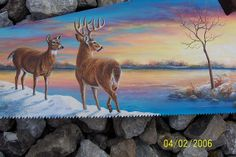 DEER ON THE LAKE HAND SAW | Flickr - Photo Sharing!