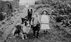 Boy (wearing kilt) and girl with two dogs and a handcart wagon. 1904