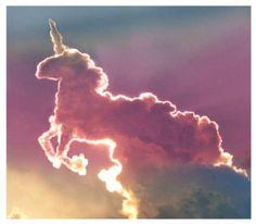 A unicorn!