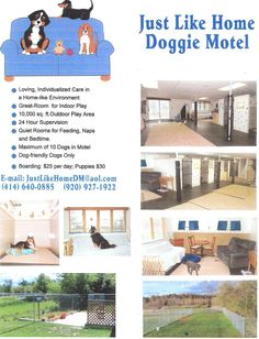 Just Like Home Doggie Motel - Boarding facility in Watertown, WI; 24 hr supervision with a max of ten boarding dogs at a time