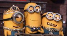 Minions funny video - Super Biker (Training wheels)in l the film Amor Minions, Gif Minion, Funny Minion Videos, Cute Minions, Minion Movie, Minions Quotes, Minion Humor, Kid Movies, Funny Movies