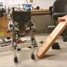 Scinet is coming Learn Robotics, Robotics Engineering, Robotics Projects, Arte Robot, Diy Robot, Futuristic Technology, Technology Gadgets, Mobile Robot, Robot Animal