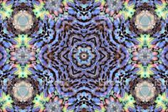 A Mandala style image of a Paua Shell. Royalty Free Images, Royalty Free Stock Photos, Kiwiana, Paua Shell, Commercial Art, Image Now, Fine Art Photography, Printable Art, New Zealand