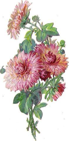 Oblaten Glanzbild scrap die cut chromo  Blume flower 12,6 cm