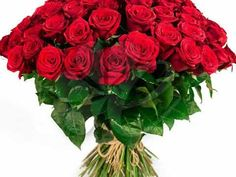 PIOSENKA IMIENINOWA DLA TERESY . - YouTube Make It Yourself, Rose, Flowers, Youtube, Plants, Blog, Pink, Blogging, Plant