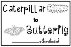 This journal is perfect to use with your students while observing caterpillars turn into butterflies. There is also a short story for beginning readers to use with it.