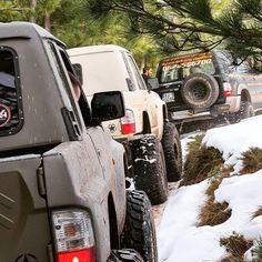 Patrol Gr, Nissan Patrol, Nice Cars, Elvis Presley, Rigs, 4x4, Safari, Monster Trucks, Adventure