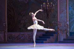 Cascanueces 2015. Ballet de Santiago. Foto de Patricio Melo