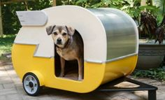 Make a Shasta-style puppy trailer dog house -- pdf file with full instructions.