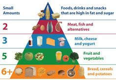 Food: Serve Your Child According to The Food Pyramid