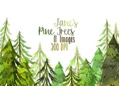 Watercolor Pine Trees Clipart by DigitalArtsi on @creativemarket