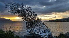 Montreux Geneva, Photos, Photo And Video, Water, Outdoor, Lake Geneva, Gripe Water, Outdoors, Pictures