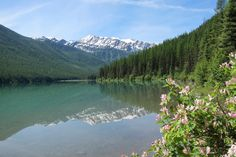 Stanton Lake, Great Bear Wilderness, Montana.  Hiked into here today.  Much prettier in person