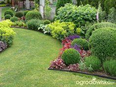 33 landscape design ideas you can implement before the start of autumn! Boxwood Garden, Garden Shrubs, Shade Garden, Lawn And Garden, Garden Paths, Front Garden Landscape, Lawn And Landscape, Landscape Design, European Garden