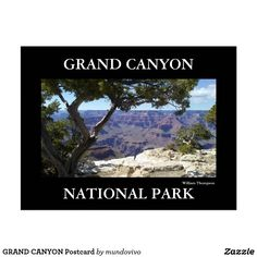 GRAND CANYON Postcard