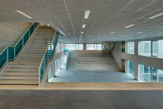Campus von Wiel Arets in Rotterdam fertig / Efeu am Zaun - Architektur und Architekten - News / Meldungen / Nachrichten - BauNetz.de