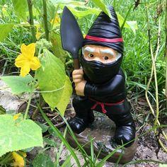 Ninja Gnome - Trending Gadgets On Petagadget Funny Garden Gnomes, Gnome Garden, Garden Tools, Gadgets And Gizmos, Latest Gadgets, Cool Gadgets, Outdoor Fun, Outdoor Decor, Enter The Dragon