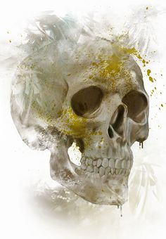 "Leonel Santa, ""Calaca N"" grunge skull illustration"