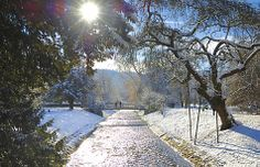 Baden Baden Germany - winter is a romantic time in our pittoresque town www.hotel-am-sophienpark.de