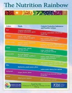 Nutrition Rainbow Food for Life healthy