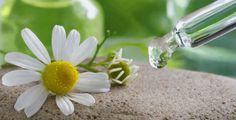 Curiamo l'irritazione con i fiori di bach