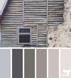 Super Ideas For Bedroom Wood Color Design Seeds Design Seeds, Colour Pallette, Colour Schemes, Color Combos, Color Palate, Paleta Pantone, Colour Board, Deco Design, Color Swatches