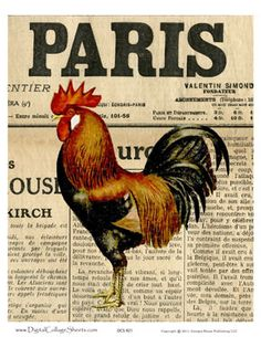 Vintage French Rooster Print ~ The Rooster or Coq is the symbol of France in French folk art and French a Country style Images Vintage, French Vintage, Vintage Art, Rooster Art, Rooster Decor, Rooster Painting, Painting Art, Diy Image, Chicken Art